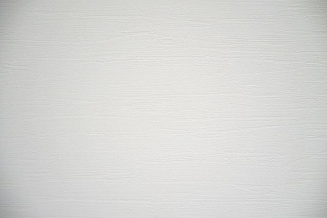 筆者宅では7年前にリビングをリフォームして白い壁紙に張り替えたので、ちょうど壁投影に使いやすい