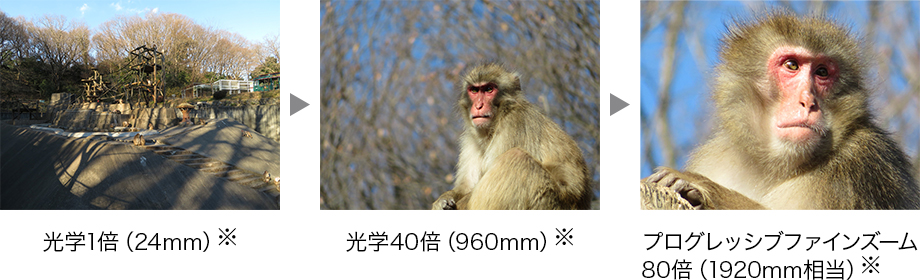 新レンズ搭載でさらに進化を遂げた「光学40倍ズーム」「プログレッシブファインズーム80倍」