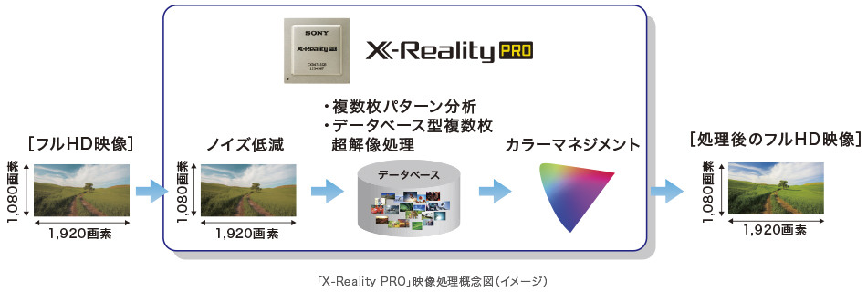 X-Reality PRO(エックス リアリティー プロ)