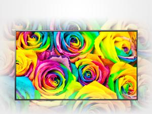 色域を飛躍的に広げるColor Prime技術。