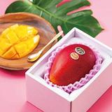 宮崎産 マンゴー 太陽のタマゴ