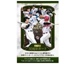 BBM ベースボールカード 30th Anniversary