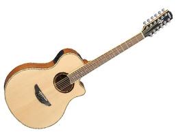 エレクトリック・アコースティックギター