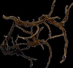 レイアウト素材(流木)