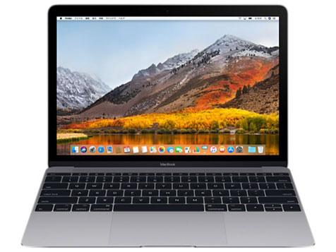 MacBook Retinaディスプレイ 1300/12 MNYG2J/A [スペースグレイ] の製品画像