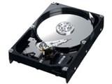 HD250HJ (250GB SATA300 7200) 製品画像