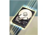 ST3160023AS (160G SATA150 7200) 製品画像
