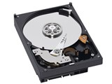 WD1600AAJB (160GB U100 7200) 製品画像