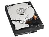 WD1001FALS (1TB SATA300 7200) 製品画像