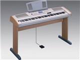 Portable Grand DGX-500 製品画像