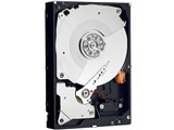 WD1002FAEX (1TB SATA600 7200) 製品画像