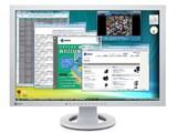 FlexScan S2402W-HXGY [24.1インチ セレーングレイ]
