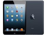 iPad mini Wi-Fiモデル 64GB MD530J/A [ブラック&スレート] 製品画像
