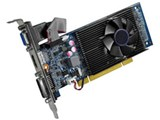 GF-GT610-LP1GHD [PCI 1GB] 製品画像