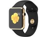 Apple Watch Edition 42mm MJ8Q2J/A [18Kイエローゴールドケース/ブラックスポーツバンド]