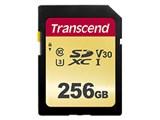 TS256GSDC500S [256GB]