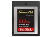 SDCFE-512G-JN4IN [512GB]