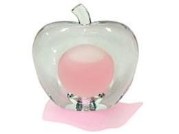 ピンクアップル EDP 25ml