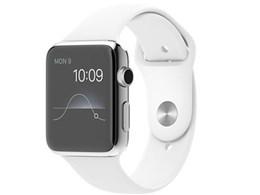 Apple Watch 42mm スポーツバンド