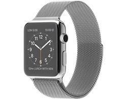 Apple Watch 42mm ミラネーゼループ