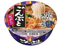 ごんぶと 天ぷらうどん 217g ×12食