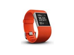 Fitbit Surge FB501TAL-JPN