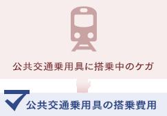 公共交通乗用具に搭乗中のケガの場合、公共交通乗用具の搭乗費用