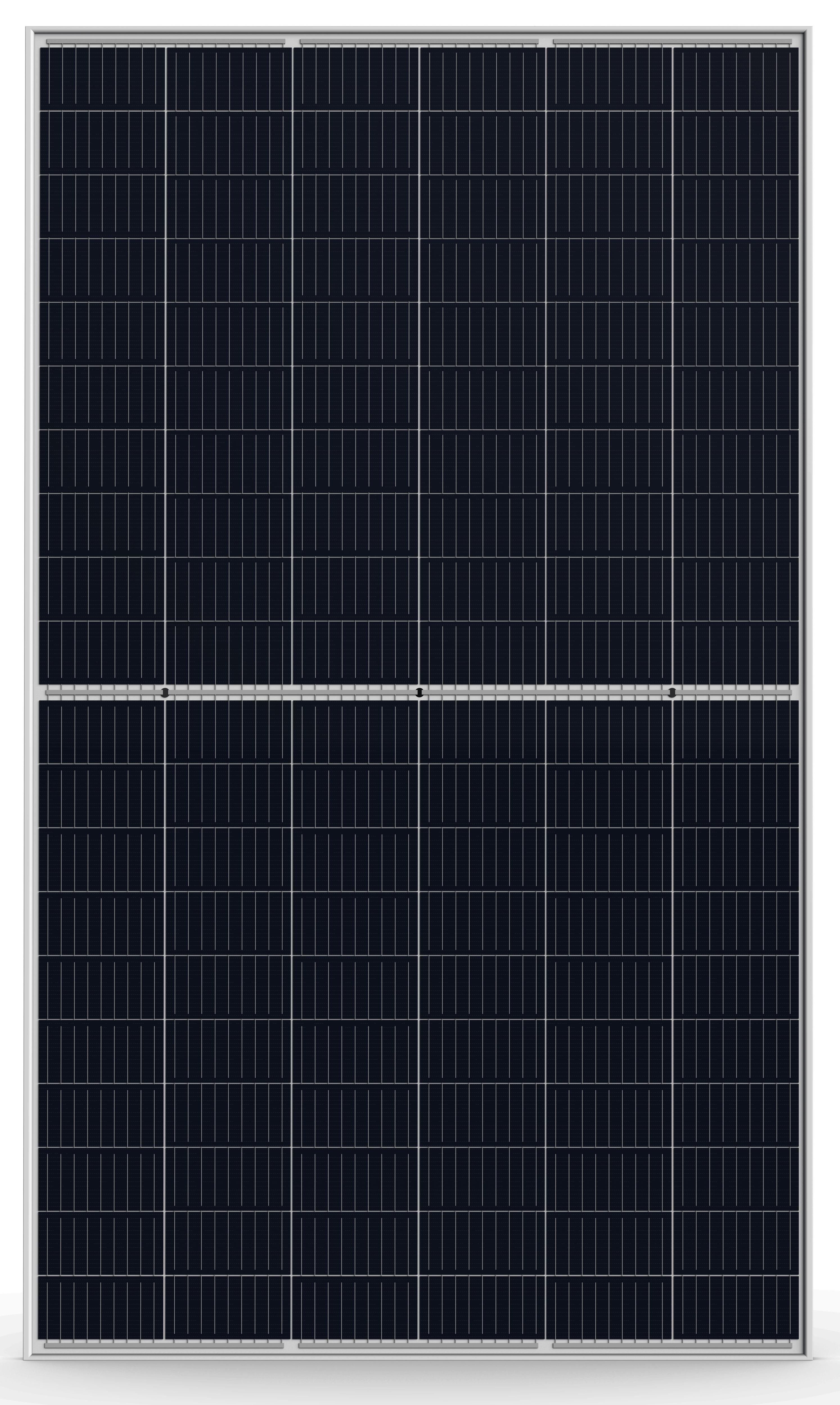 トリナ・ソーラー TSM-DE06M(II)  Honey M